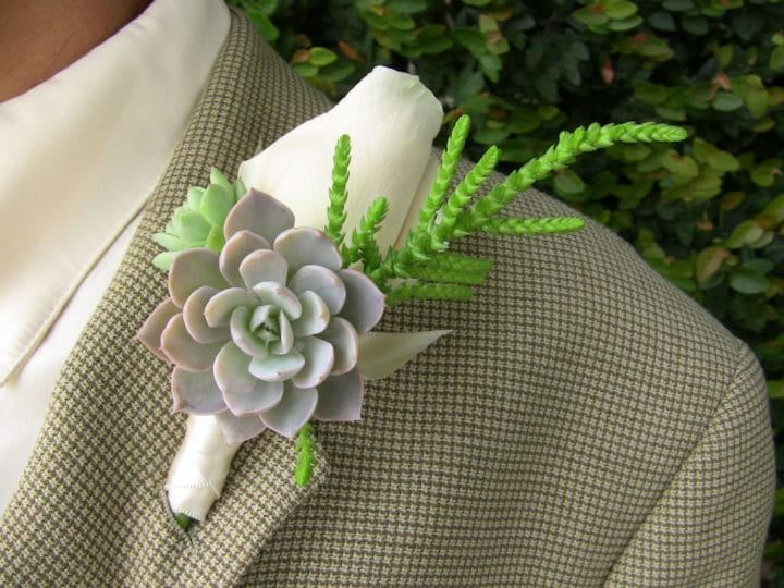 Succulent-boutonnire_2419