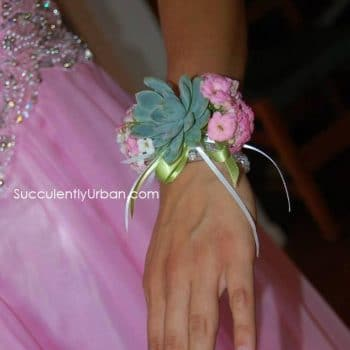 5 wrist Corsages Tiffany