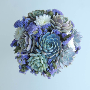 Succulent bouquet for Rebecca in Glendale Arizona