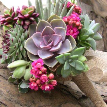 Succulent-bouquet-von_nurnberg