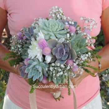 "Succulent Bouquet ""Stephanie"""