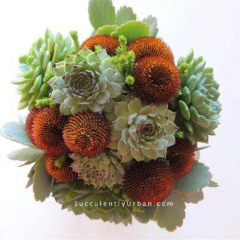 succulent-bouquet-012