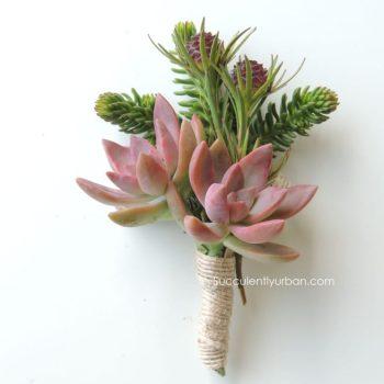 succulent-boutonniere_323 copy