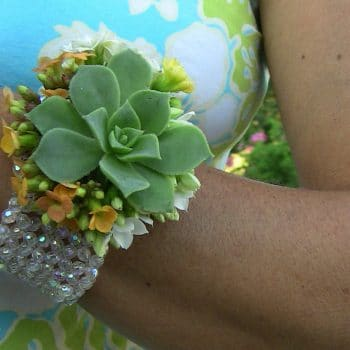 Bill-Succulent Corsage and boutonniere set with purple accent 5/17/19