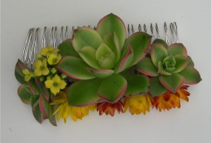 succulent and flowres hair comb