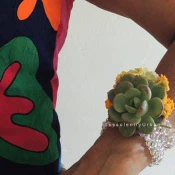 Succulent Prom Corsages & Boutonnieres