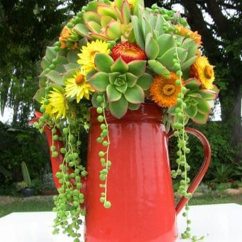 Succulent-bouquet-k