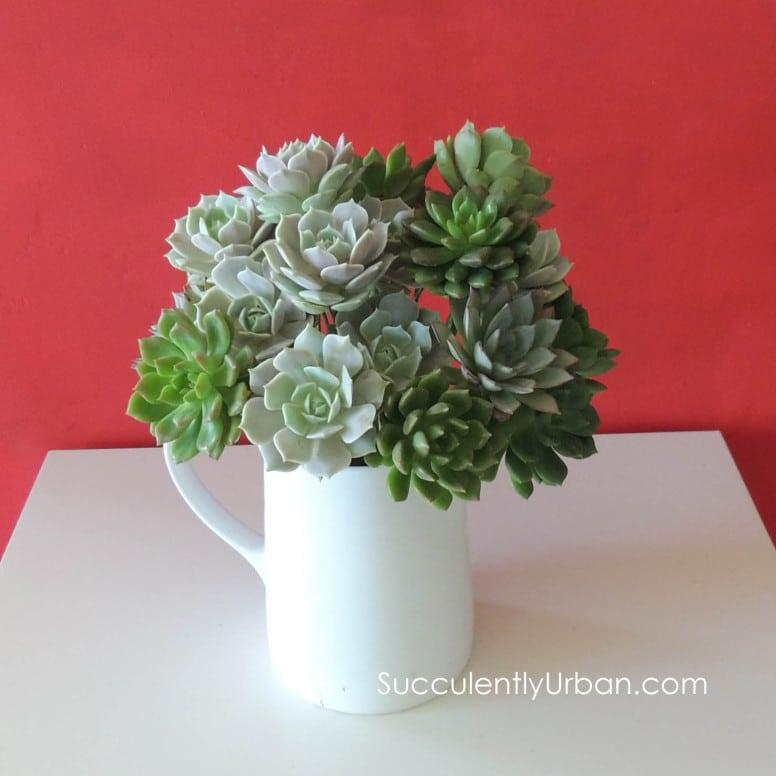Diy Wedding Flowers Succulents : Diy succulent bouquet