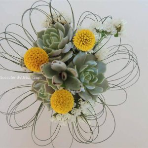 succulent boquet-triple echeveria