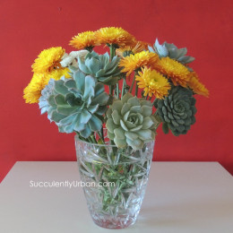 wired-succulents_596b