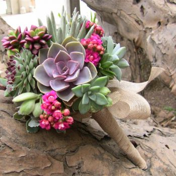 Succulent Bouquets for Jill