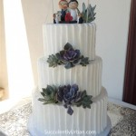 succulent-cake-108- copy (Medium)