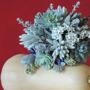 succulent-bouquet_winter025
