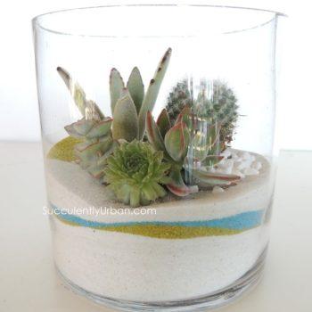 succulent-terrarium_3321