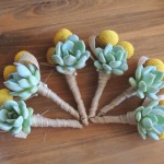 Succulent-boutonnieres with crespedia