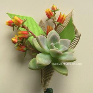 Succulent-boutonniere_2842