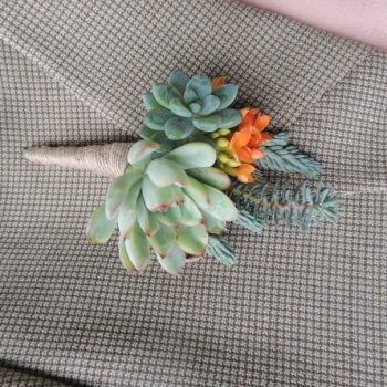 Set of 8 Succulent Boutonnieres- to be shipped with order #80177