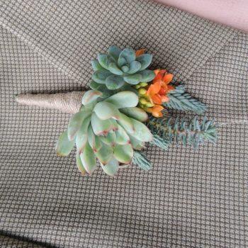 succulent-bouton_3550