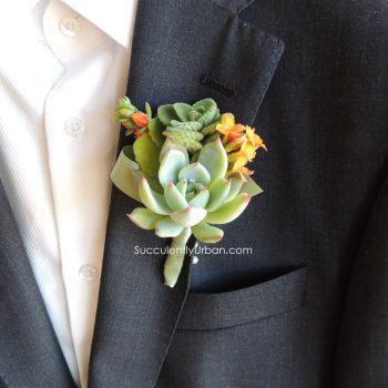 succulent-boutonniere_905