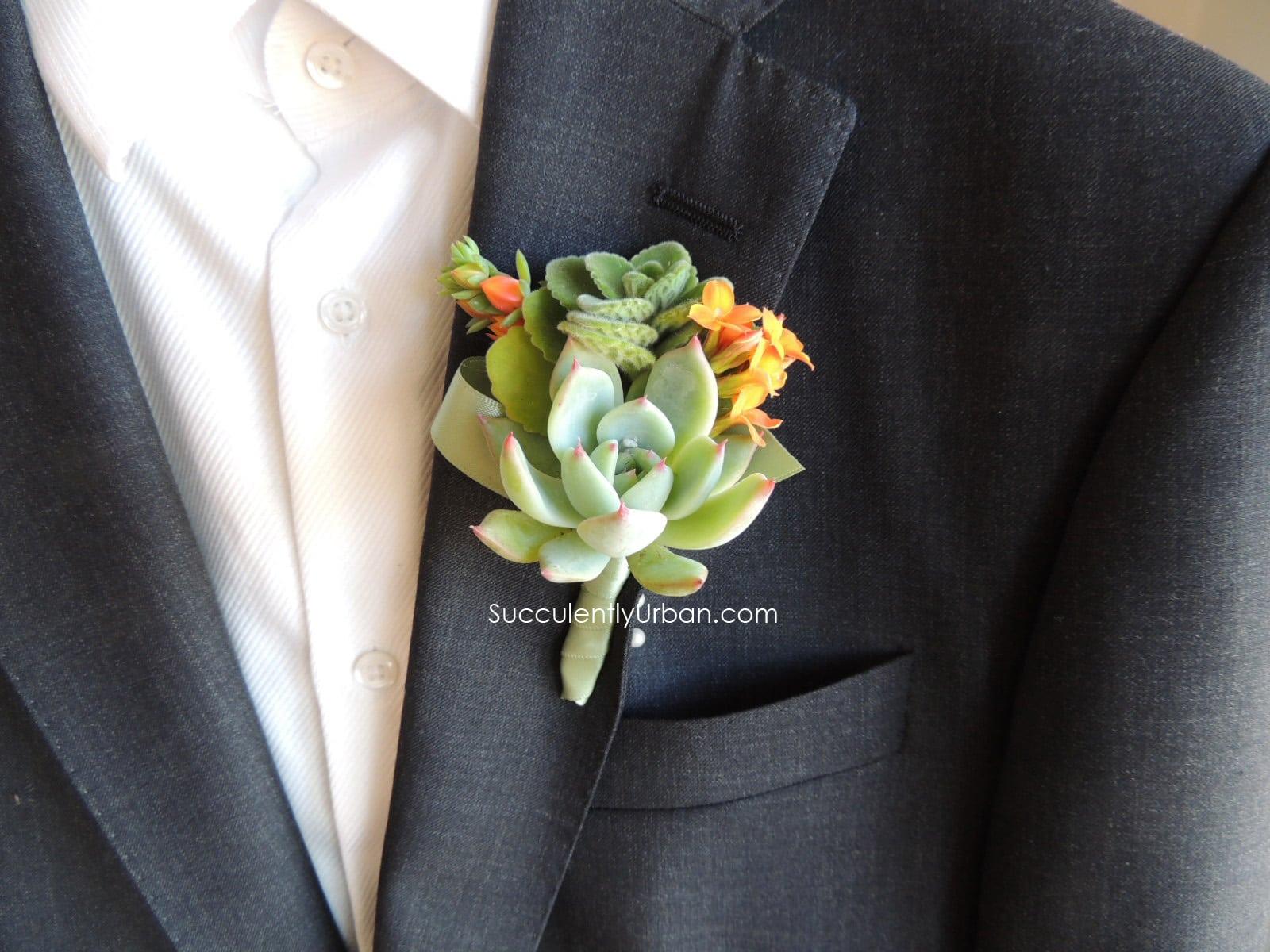 succulent boutonniere  urban succulents, Beautiful flower