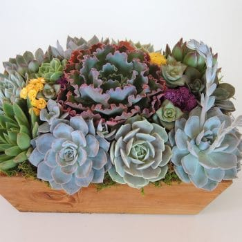 Rectangular Wood Box Centerpiece - Includes Shipping