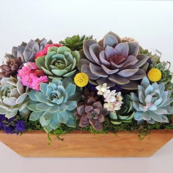 Rectangular Wood Box Centerpiece
