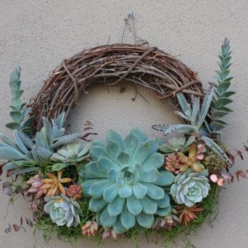 Succulent Wreath Autumn