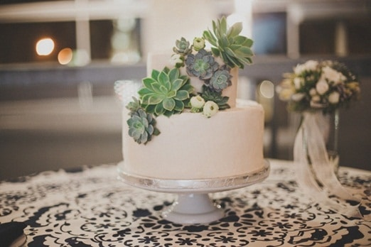 Succulents for Four Layer Cake