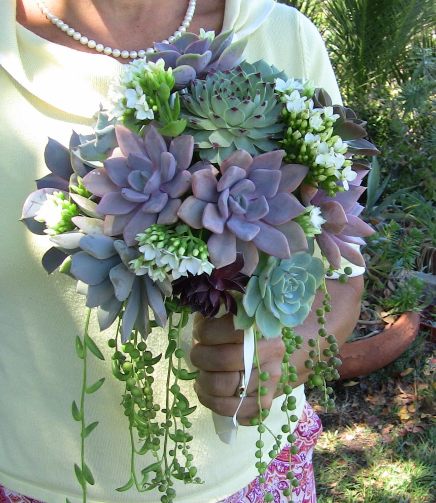 wedding bouquets with succulents jeannine and jose s bridal suite succulents 8545
