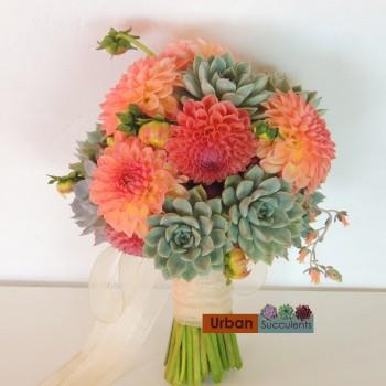 succulent-bouquet-dahlias-1319c