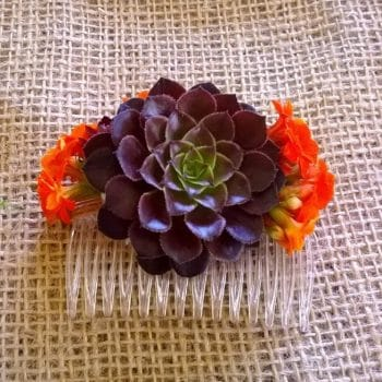 Purple Succulent Hair Comb