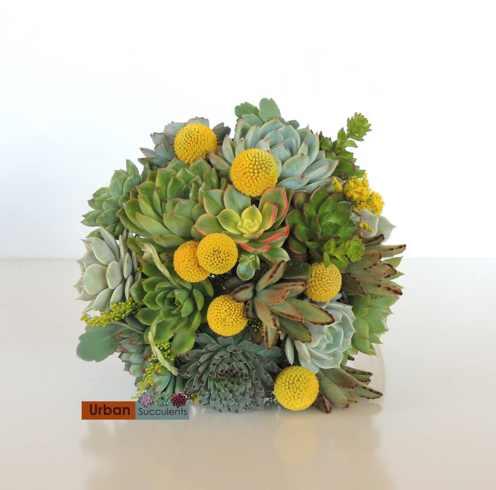 Green and Yellow Succulent bouquet