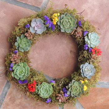 Succulent-arrang 0806