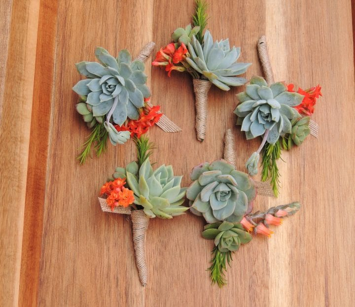 succulent boutonniere with orange kalonchoe bloom
