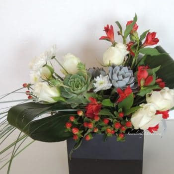Succulent Arrangement Red and White