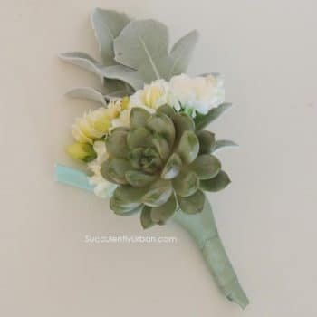succulent boutonniere products  urban succulents, Natural flower