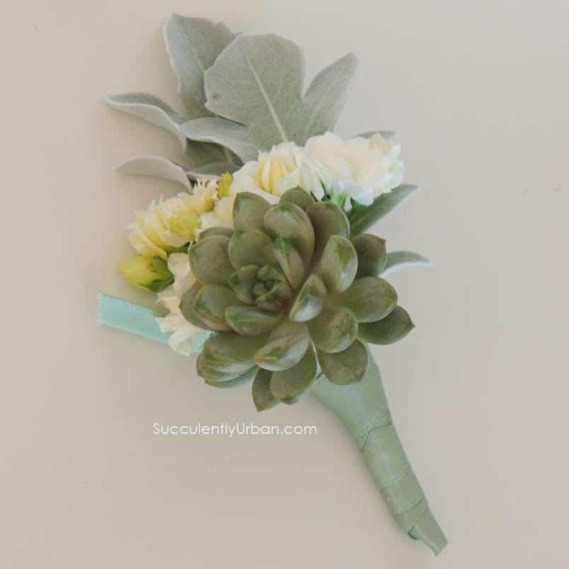 Succulent Boutonniere and Corsage set | Urban Succulents