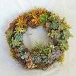 succulent-wreath_0205