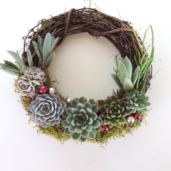 succulent-arrangement-xmas-0695