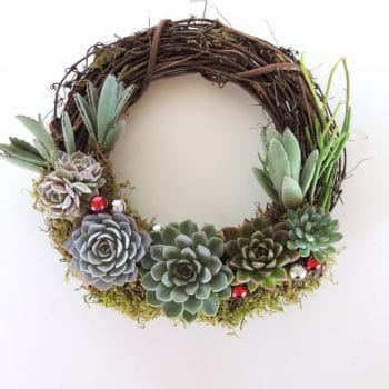 Succulent Wreath Crescent (ships in CA.)