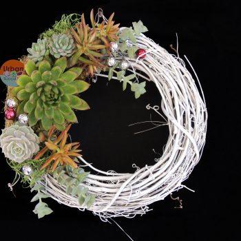 succulent-wreath-0678