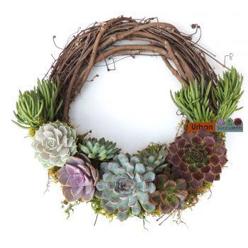 succulent-wreath_0009b