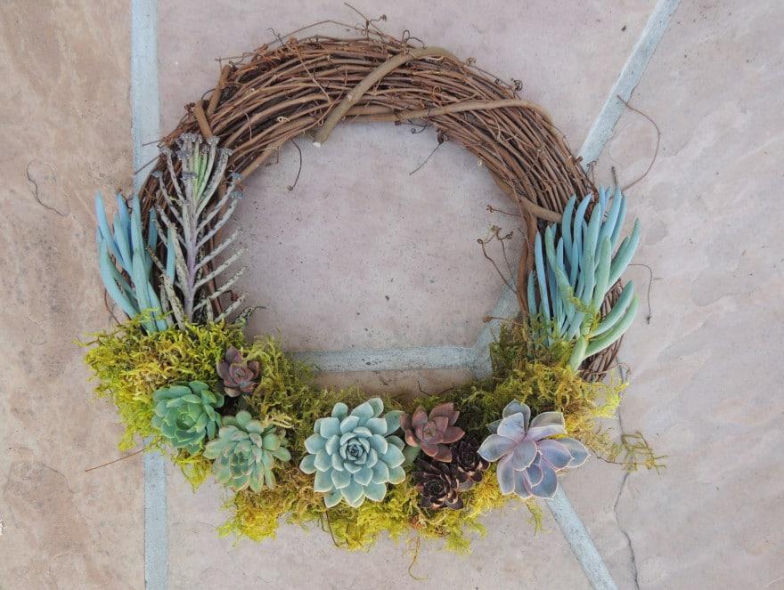 wreaths succulent wreath crescent succulent wreath crescent return to ...