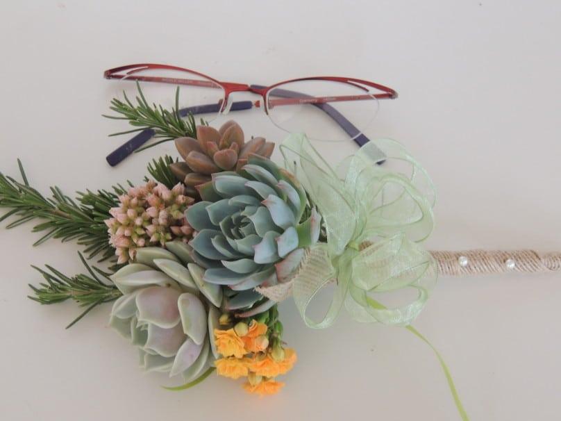 Aroma & amp; Jardines suculentos