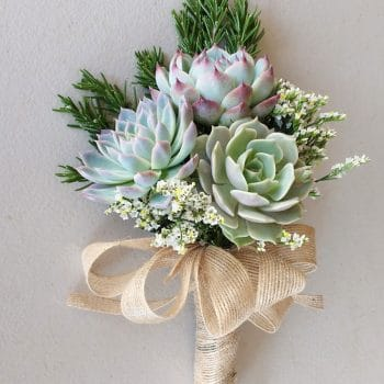 Succulent Bouquet Products Super Fast Delivery