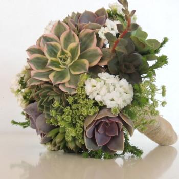 succuylent bouquet 120