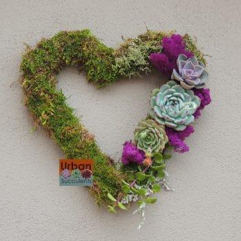 succulent-valentine_3573