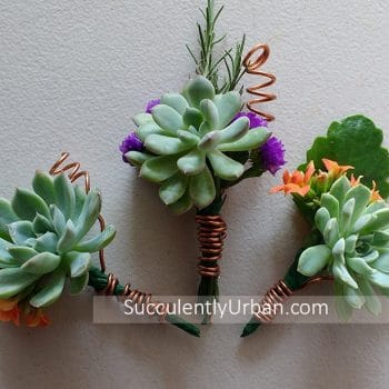 Wedding Boutonniere Copper