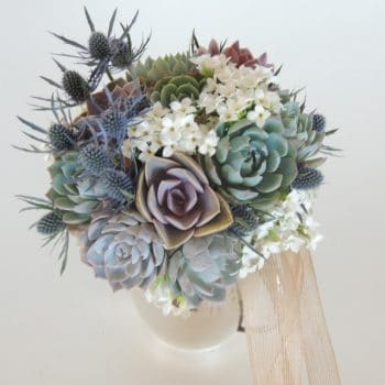 Succulent Bouquet with Blue Thistle-Taylor