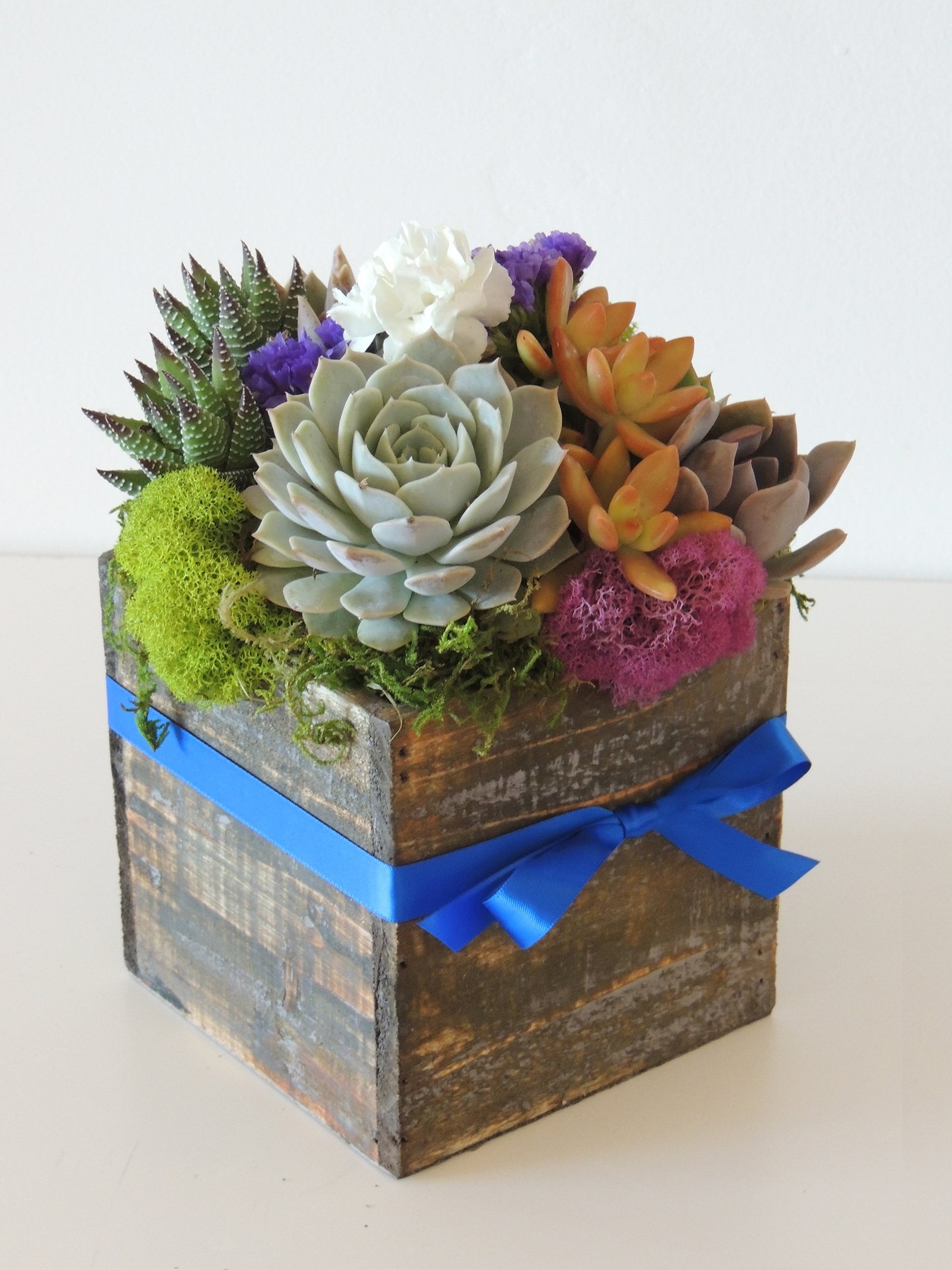 Succulent Arrangement For Table Tops And Outdoor Tables